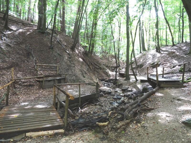 Das Bild zeigt mehrere hölzerne Brücken in der Steckeschlääferklamm.