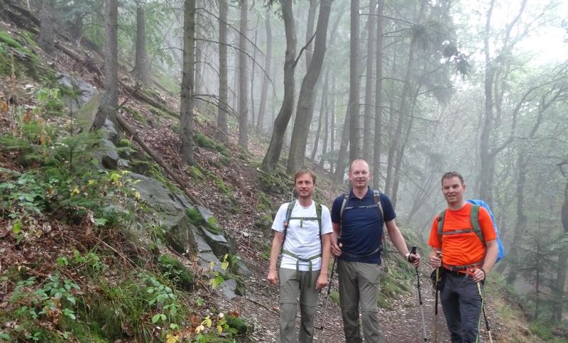 Das Bild zeigt drei Wanderer im diesigen Bingener Wald.