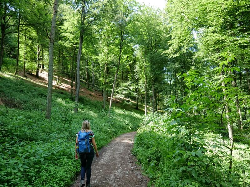 Das Bild zeigt Meike auf dem Bergmannsweg Kirchdornberg, der hier als schmalerer Pfad durch den Wald verläuft.