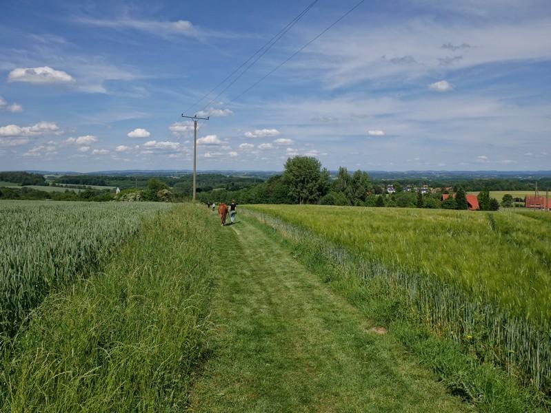Das Bild zeigt einen Blick über die Felder bei Kirchdornberg.