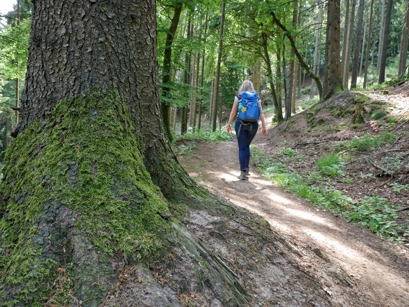 Das Bild zeigt Meike auf dem Bergmannsweg Kirchdornberg im Wald.