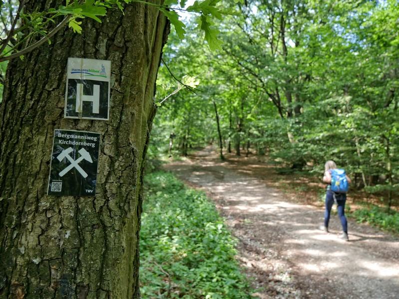 Das Bild zeigt das Schild des Hermannsweges und das Schild vom Bergmannsweg Kirchdornberg.