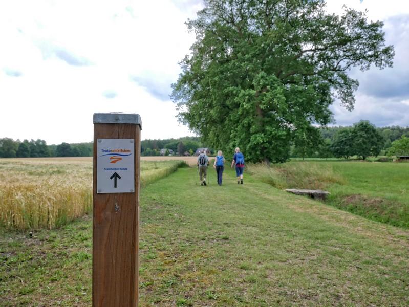 Das Bild zeigt im Vordergrund das Schild des Teutoschleifchens Steinbecker Runde und im Hintergrund drei Wanderer auf einem Wiesenweg.