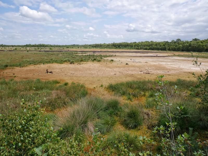 Das Bild zeigt ausgetrocknete Seen im Venner Moor.