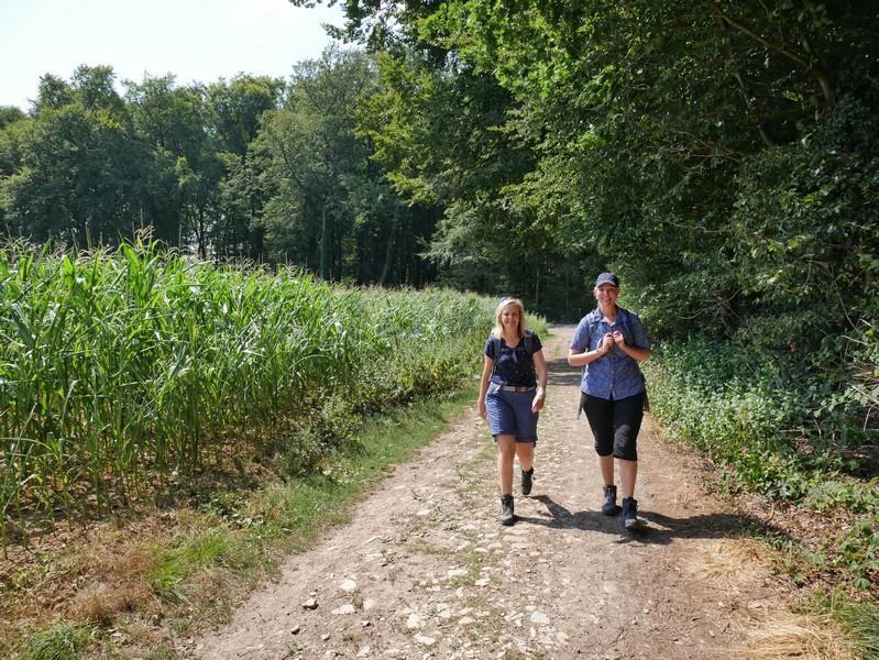 Das Bild zeigt zwei Wanderer auf dem TERRA.track Hollager Berg neben einem Maisfeld.