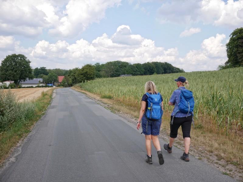 Das Bild zeigt zwei Wanderer auf einem asphaltierten Abschnitt der Strecke auf de,m TERRA.track Hollager Berg.