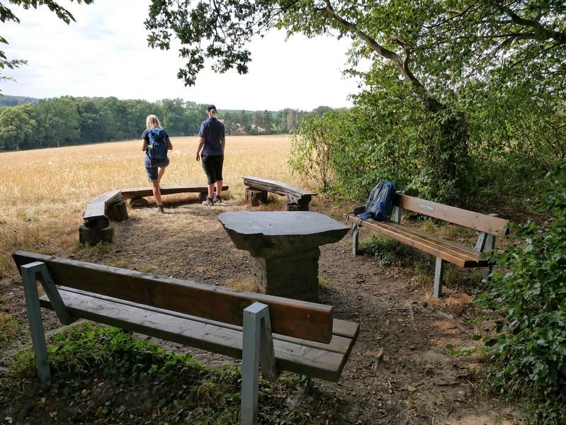 Das Bild zeigt den Picknickplatz auf dem Hollager Berg.