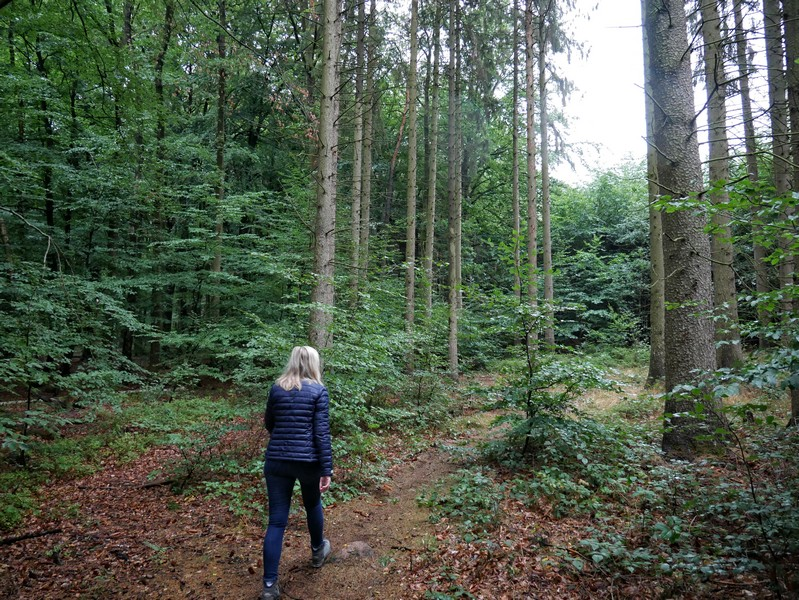 Das Bild zeigt Meike auf einem schmalen Waldweg.