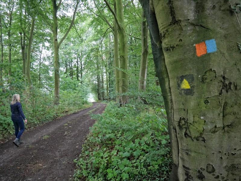 Das Bild zeigt Meike und die Markierungen des Weges über den Gattberg sowie das Zeichen des DivaWalks.