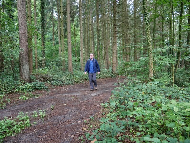 Das Bild zeigt den Wandervogel auf dem DiVa Walk im Waldstück bei Schloss Neu Barenaue.