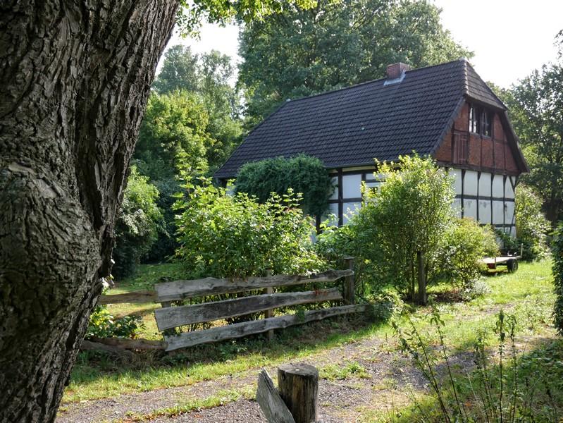 Das Bild zeigt ein Fachwerkhaus mit urigem Garten in der Straße Campemoor