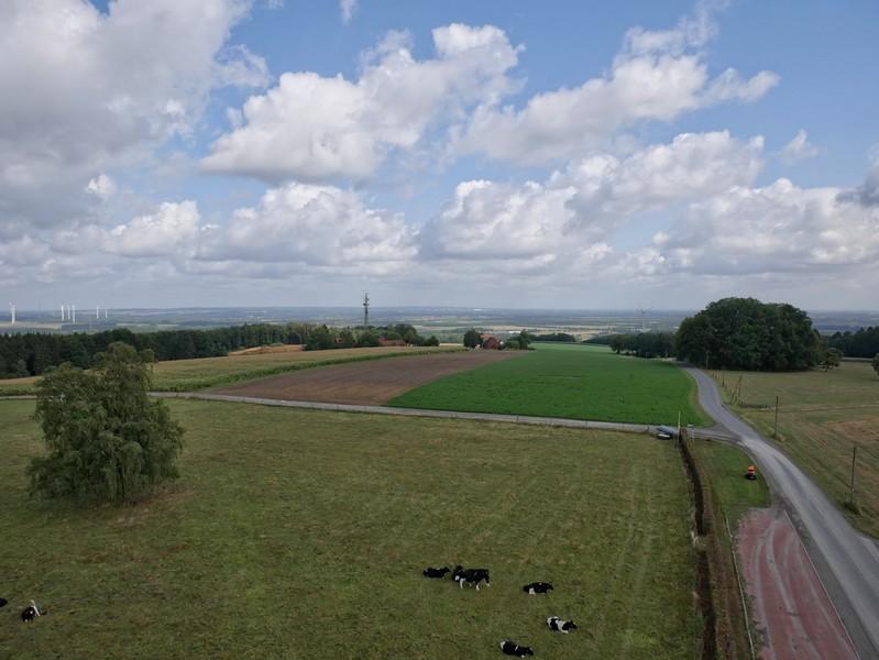 Von oben haben wir eine grandiose Aussicht ins Osnabrücker Land.