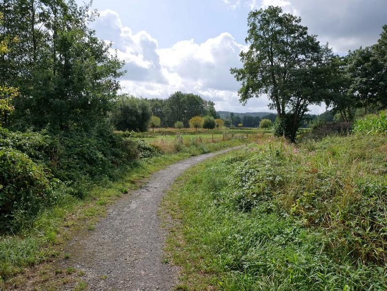 Schmale Wege entlang des Venner Mühlenbachs - der DiVa Walk beginnt vielversprechend!