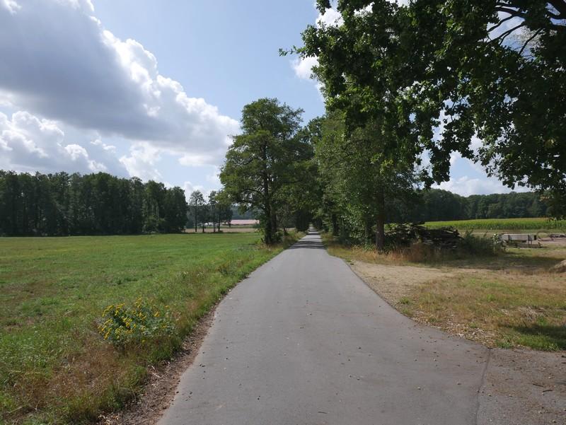 Wenn wir ehrlich sind: Selbst mit dem Fahrrad wäre eine solche Strecke sturzlangweilig.