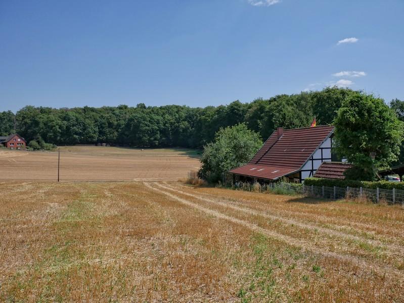 Weite Felder, sanfte Hügel - so sieht es dann auf dem zweiten Abschnitt der Tour auf dem TERRA.track Nettetal aus.
