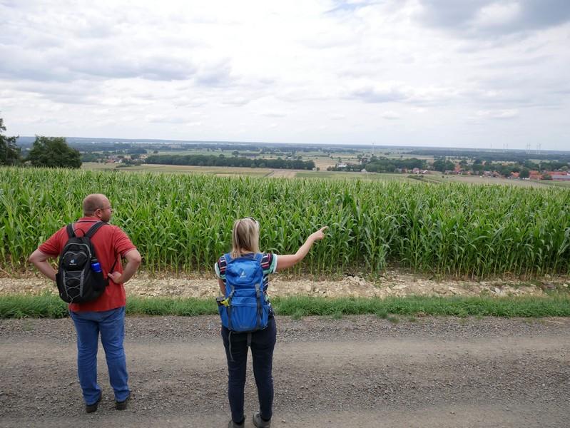 Auch bei hohem Mais haben wir hier immer noch einen schönen Ausblick über das weite Land zu Füßen des Stemweder Berges.
