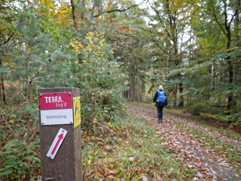 Die rot-weiße Markierung führt uns gewohnt sicher auf dem TERRA.track Kettelsberg. Immer weider treffen wir aber auch die blau-gelben Wegzeichen des Hünenwegs.