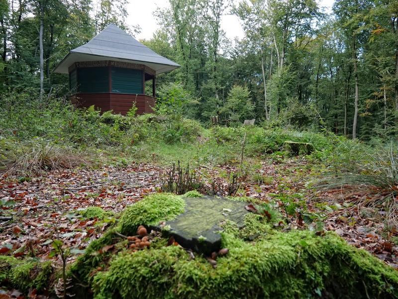 Nach den allerletzten Höhenmetern wartet schon die Goethehütte auf uns.