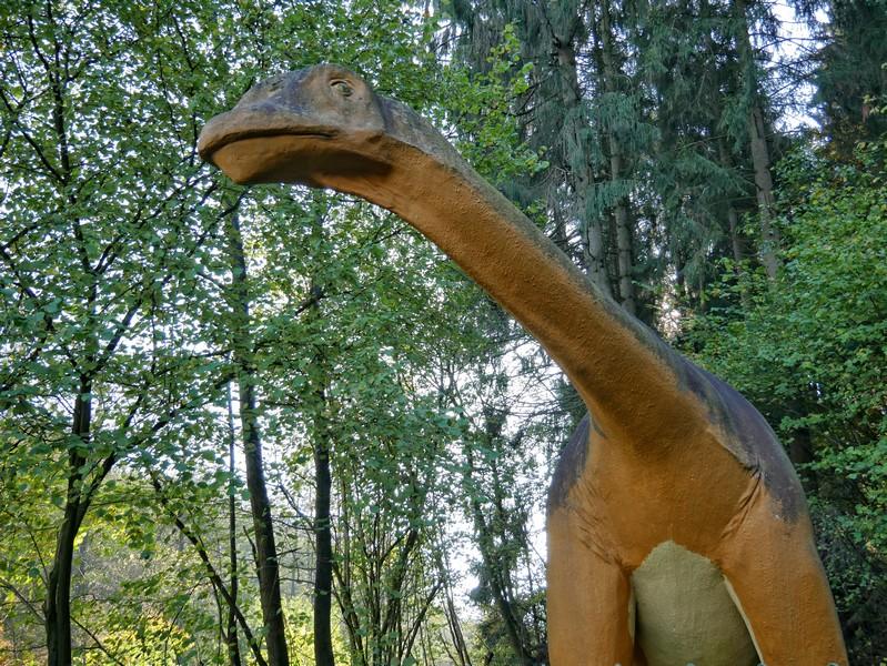 Die Abzweigung zu den Dinospuren bewacht dieses mächtige Exemplar.