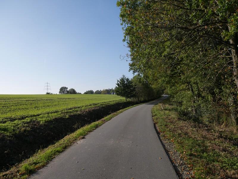 Ein kurzer Straßenabschnitt geleitet uns zum Bergwirt.