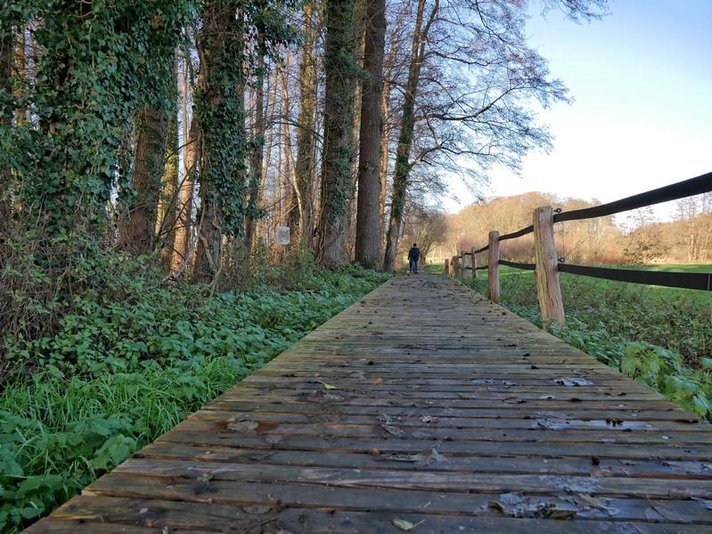 Holzplanken geleiten uns trockenen Fußes über die sumpfige Landschaft.