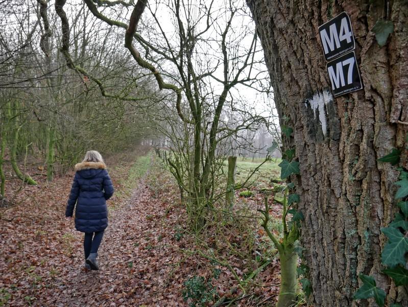Der M7 führt uns weiter zwischen Wald und Feld.