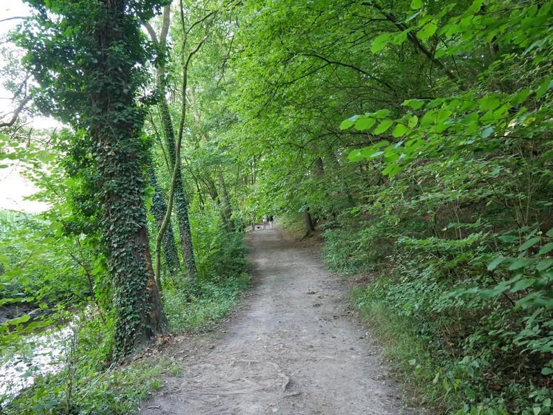 Grüne, schöne Wege führen uns entlang der Nette durch das nach ihr benannte Tal.