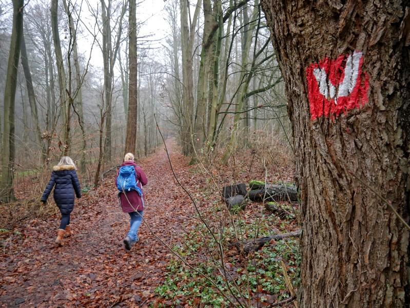 Wir folgen bei dieser Wanderung der rot-weißen Markierung, die uns glücklicherweise nie im Stich lässt.