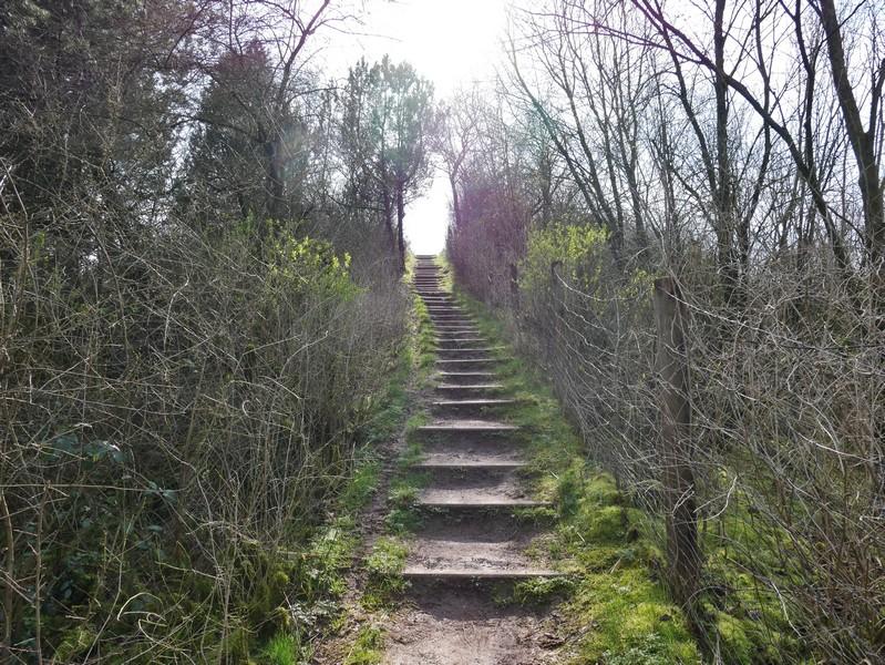 Über einige Treppen geht es hinauf auf den Gipfel.