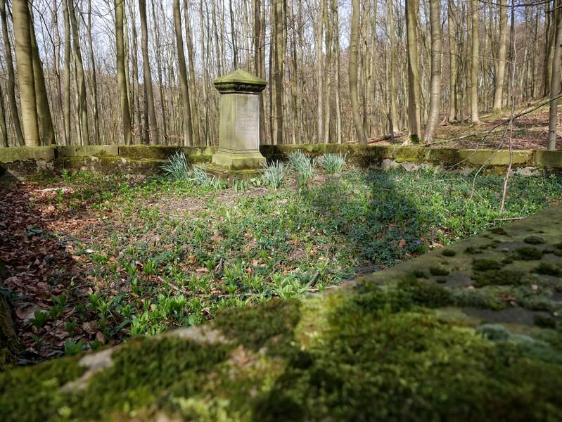 Friederike Louise Delius liegt hier begraben.