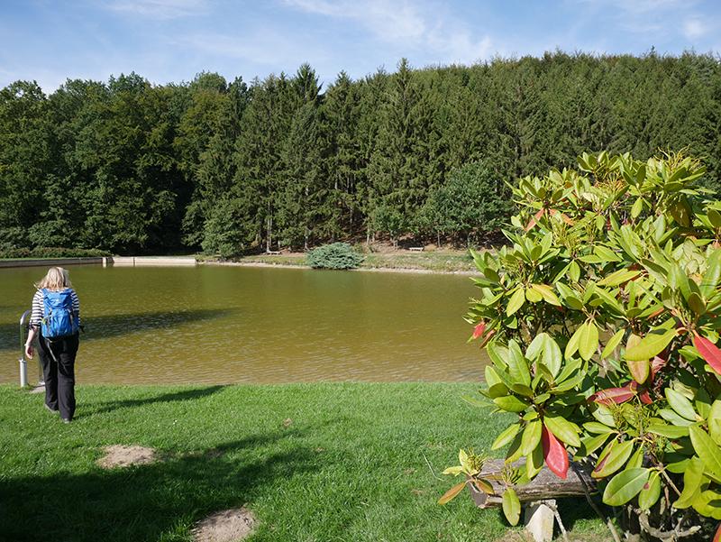 Der kleine See des Campingsplatzes bietet uns eine Gelegenheit zur Rast.