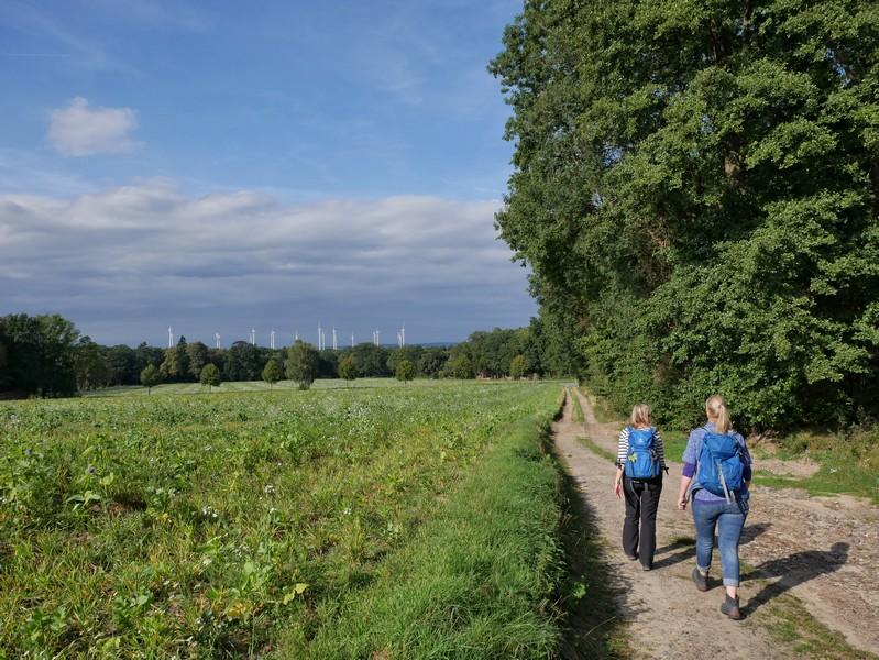Die letzten Meter auf dem DiVa Walk führen uns zurück zum Wanderparkplatz nahe der Varus Deele.