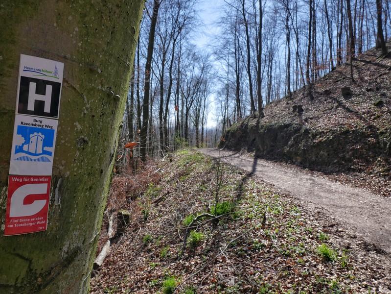 Neben dem Burg Ravensberg Weg verlaufen hier auch der Hermannsweg und der Weg für Genießer. Letzterer ist übrigens ebenfalls - mit einer anderen Tour - in meinem Wanderbuch vertreten.