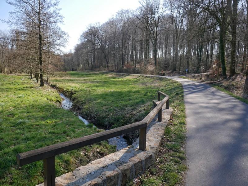 Im Wiesental trifft der Ahornweg auf den Poggenbach.