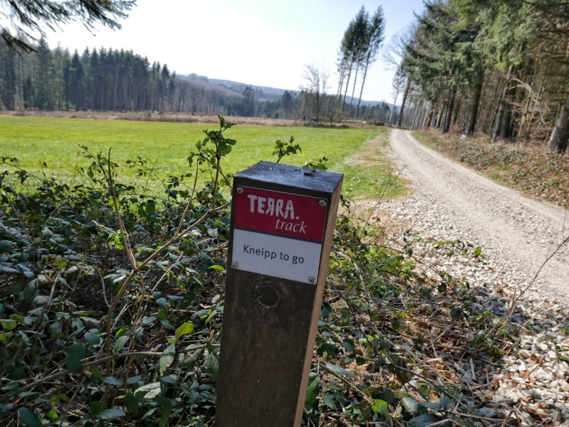 Nimmt uns auf dem Rückweg bei der Hand: der TERRA.track Kneipp to go.