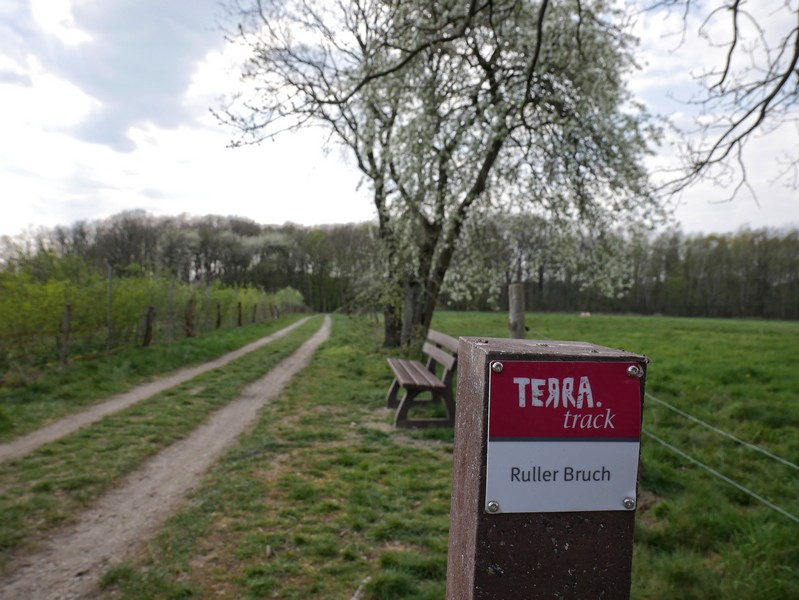 Die rotweißen Schilder geleiten uns treu auf dem TERRA.track Ruller Bruch.