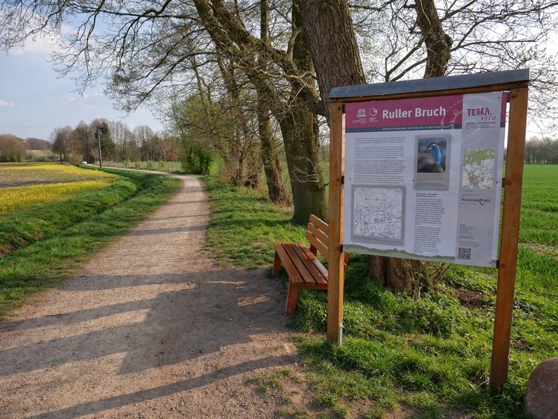 Eine Info-Tafel am Wegesrand gibt uns weitere Informationen zum Landschaftsgebiet Ruller Bruch. Auch der Eisvogel ist hier übrigens zuhause!