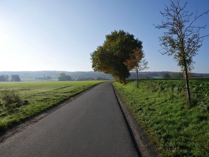 Wir treten etwas Asphalt, bevor wir den idyllischen Waldteil auf dem TERRA.track Schnippenburg erreichen.