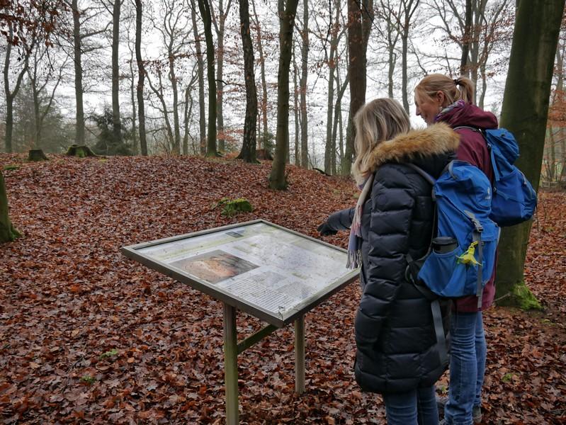 Gleich zu Beginn unserer Tour auf dem TERRA.track Alkenkuhle treffen wir auf mehrere Großsteingräber.