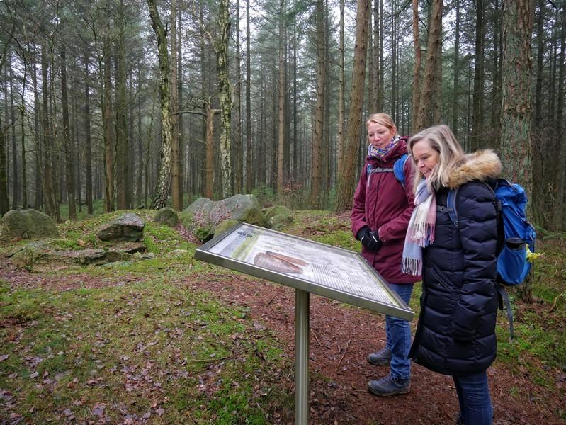 Das Großsteingrab Grumfeld Ost liegt etwas verborgen im Wald an einem kleinen Seitenpfad.