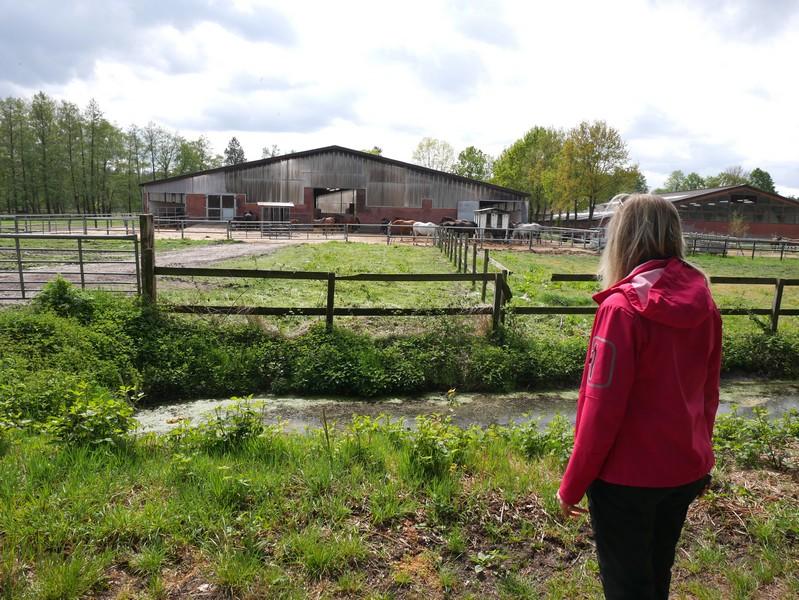 Direkt hinter dem Bauernhof steht die rote Säule.