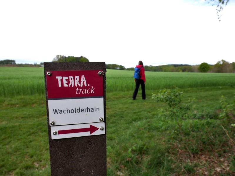 Die rot-weißen Markierungen kennen wir inzwischen bestens und auch auf dem TERRA.track Wacholderhain leiten sie uns sicher.