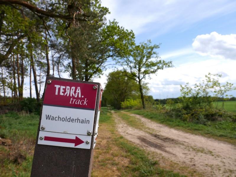 Ein hübsches Stück Osnabrücker Land: der TERRA.track Wacholerhain in Merzen-Plaggenschale.