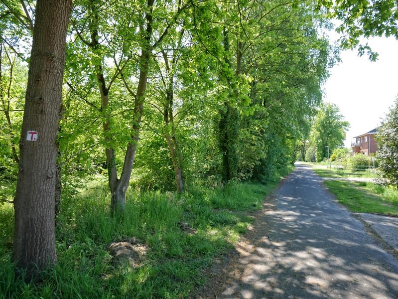 Siedlungsstraßen und kleinere Wege bestimmen zunächst das Bild auf dem TERRA.track Fürstenauer Patt.