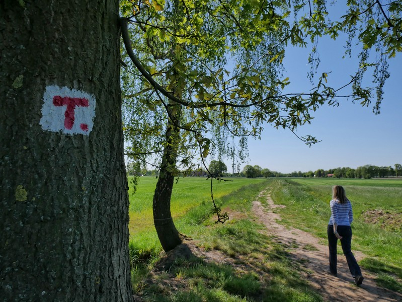 Mehr als einen Kilometer führt uns der TERRA.track Fürstenauer Patt nun durch die Felder.