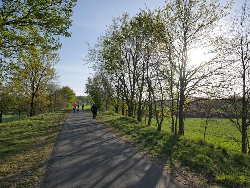 Einen Kilometer geht es dann immer geradeaus auf dem TERRA.track Richtstättenweg.