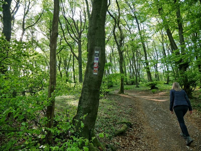 Wanderwege-Hotspot: Wir haben unseren Luisenturmweg Borgholzhausen erreicht.