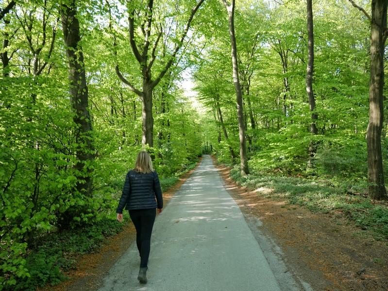 Ein kurzes asphaltiertes Stück erwartet uns hier. Auf ihm begleiten wir auch den Hermannsweg.