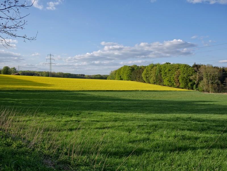 An der Wellingholzhauser Straße erwarten uns weitläufige Felder und die Abzweigung ins Schweizer Tal.