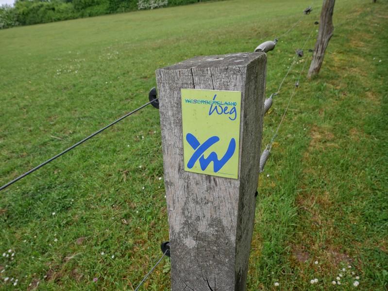 Die sehr gute Markjierung des Weserberglandweges geleitet uns sicher auf dem ersten Teil der Tour.